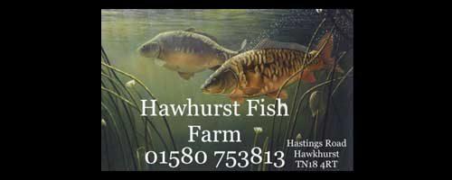 Georgie-Wood_Eastbourne-Eagles_Hawhurst-Fish-farm