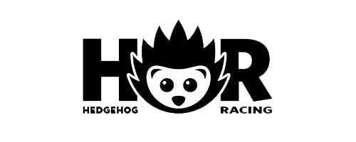 Jason-Edwards_Eastbourne-Eagles_Hedgehog-racing